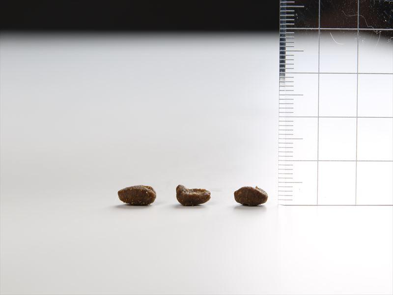 オリジンキャットキトゥン粒